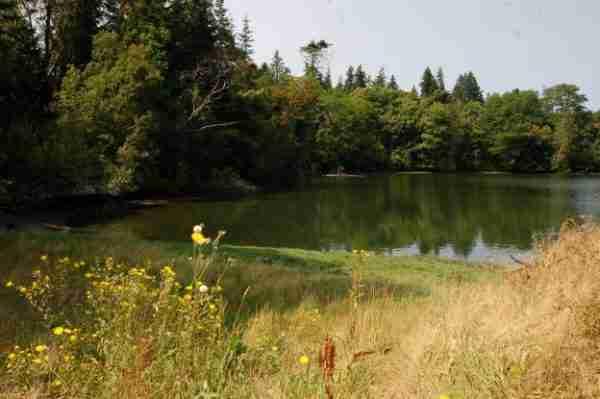 Blakely Harbor Mill Pond