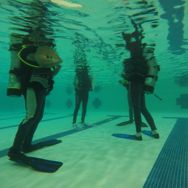 Learning to dive SCUBA pool session getting ready.