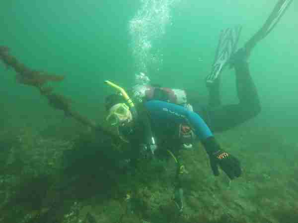 SCUBA Diving at Rockaway Beach, Bainbridge Island