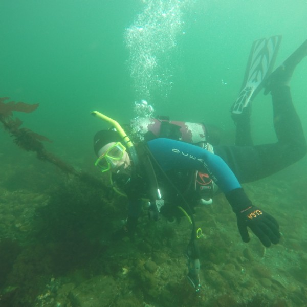 SCUBA Diving at Rockaway Beach, Bainbridge Island