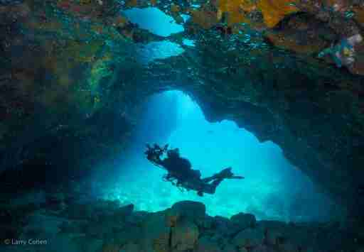 Diving Gardens Of The Queen Marine Park Cuba