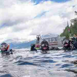 Group Dives Guided